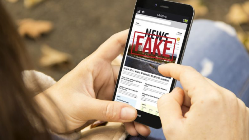 The detoxification diet of fake news in the digital age